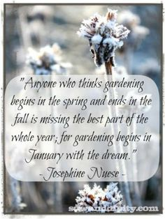 """""""Anyone who thinks gardening begins in the spring and ends in the fall is missing the best part of the whole year; for gardening begins in January with the dream.""""  Josephine Nuese"""