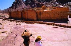 Egypt: prepare to be charmed by Sharm el-Sheikh