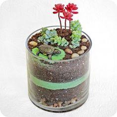 Topsy Turtle succulent plant terrarium. $50.
