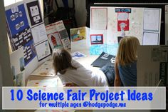 10 Science Fair Project Ideas at Hodgepodge