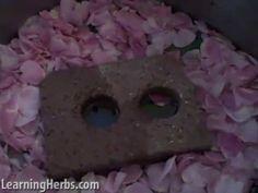 rose water, herb, red roses, rose petals