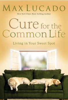 e-Book Sale: Cure for the Common Life {by Max Lucado} ~ $1.99! #kindle #books - I have this book in hard copy and I love it! This is a great deal.