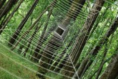 natur art, spider webs, the artist, art installations, landscape art, landart, land art, natural beauty, sylvain meyer