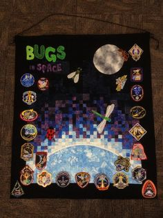 Wall quilt designed to hold patches for all Space Shuttle and International Space Station missions with a crewmember from the Astronaut Class of 2000 (nicknamed the Bugs).