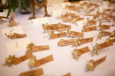 dinosaur figurine escort cards // photo by Caitlin Thomas // http://ruffledblog.com/whimsical-pennsylvania-wedding