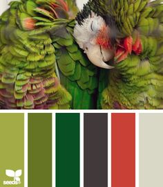 Color Palette for Jewelry and Friendship Bracelets Inspiration (Five) #Green #Gray #Charcoal #Red #OrangeRed #Cream #White