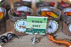 A Creepy Crawly Insect and Reptile Party : Anders Ruff Custom Designs :