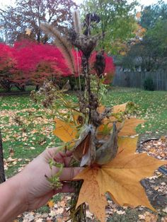 Inside Outside Michiana: Nature Play: 11 Ways to Play with Leaves!