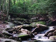 At almost every turn, you'll be awestruck by the natural beauty of the Wilderness Trail - Banner Elk, NC