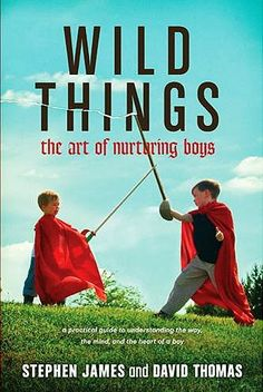 This is a great book for moms of boys of all ages!