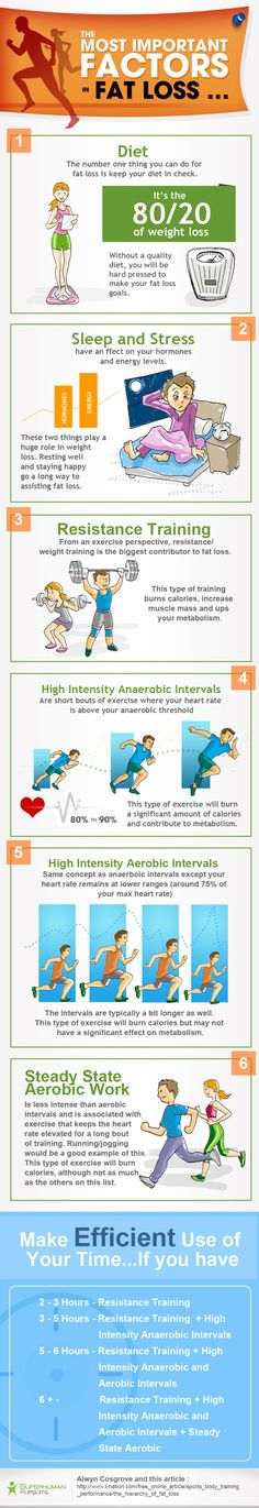 fat-loss-exercise-guide