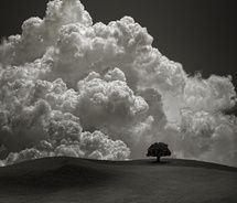The Storm Behind the Hill / Carlos Gotay