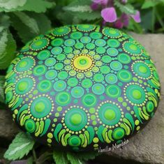 Photo by Lucy in Garstang. Image may contain: plant, text that says 'Vanilla Mandala'.