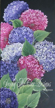 24x48 Gallery Wrapped Canvas Hydrangeas by Sandy McTier