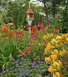 garden decor, birdhous, stun bird, focal point, flower, bird hous