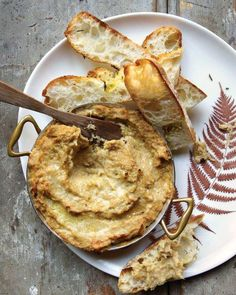 Warm Fennel-and-Parmesan Dip Recipe