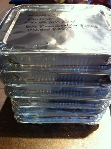 tips on freezing meals