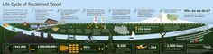 Life Cycle Reclaimed Wood Infographic