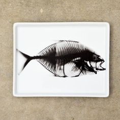 Fab.com | Vintage Inspired X-Ray Trays