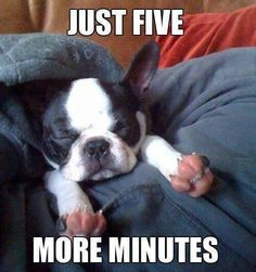 Just five more minutes