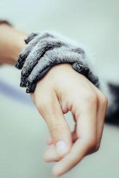 Human touch byDavid Olkarny
