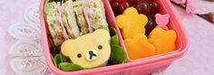 bento box, foods, japanes food, bears, boxes