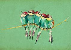 ilustración de Clara Niubo