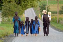 amish countri, amish famili, amish babi, church, amish life