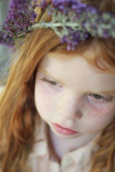 Buddleia crowns » gingerlilytea