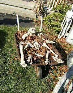 Assorted bones with dirt on a wheelbarrow, a creative Halloween decoration.