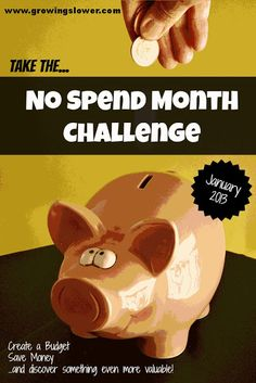 Repin if you resolve to get back on budget in 2013! Then click through to take the No Spend Month Challenge.