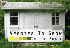Vegetables You Can Grow In The Shade - Empress of Dirt