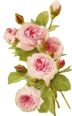 Sweetly Scrapped: Free Vintage Roses