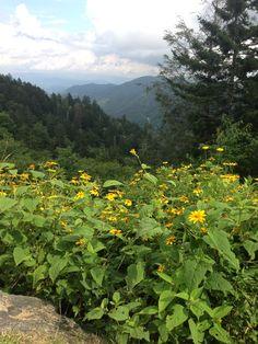 Smoky Mountains Gatlinburg, Tennessee