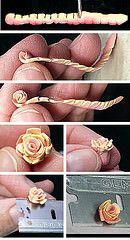 Rolling Rose 2