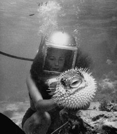 Roger Wilkerson: Puffer Fish