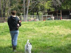 Farmer Dani gives us a tour.