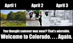 Colorado Life lol