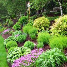 Landscaping a sloped hillside