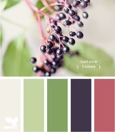 nature tones palette from Design Seeds