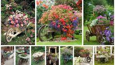 Use an Old Wheelbarrow as a Planter