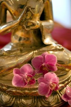 Beautiful golden buddha and orchids.