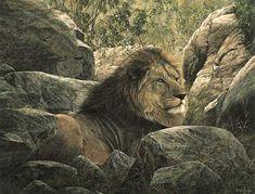 Simon Combes - Serengeti Monarch (http://www.hiddenridgegallery.com/store/simon-combes/serengeti-monarch.html) #art #simoncombes
