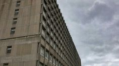 The brutalist archit