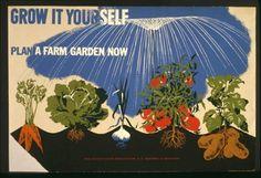 #gardening #garden #victory #garden #poster #wpa