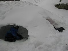 make a snow fort!!
