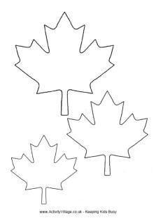 Maple Leaf Template More