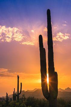 Sunset in Lost Dutchman State Park - Arizona