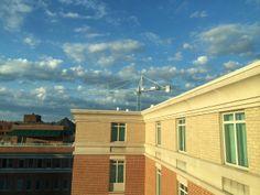 A magnificent crane in Alexandria, Virginia.
