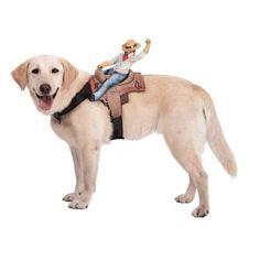 Dog-friendly dog costume
